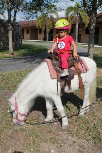 small child riding a white pony